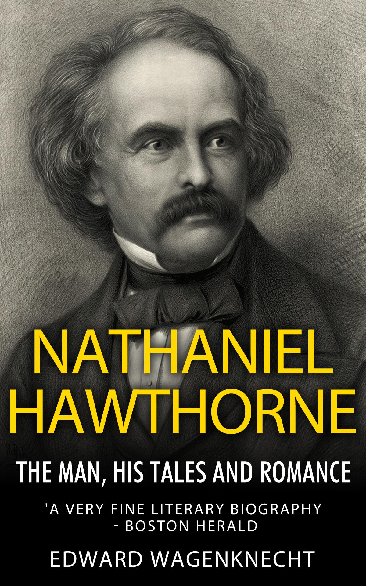 Literary Criticism on Nathaniel Hawthorne?